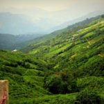 5 cool and hilly destinations in India that won't burn a hole in your pocket